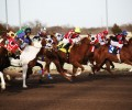 The World's Biggest Horse Racing Events